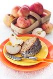 Stycke av den hemlagade äpplebundtkakan Fotografering för Bildbyråer