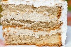 Stycke av den ljusbruna kakan Arkivbild