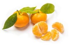 Stycke av frukt Royaltyfri Foto