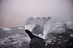 Stycke av is i Island, isberg, svart strandsand Royaltyfri Foto