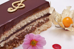 Stycke av kakan Royaltyfria Bilder
