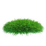 Stycke av kantjusterat gräs som ska installeras Royaltyfria Foton
