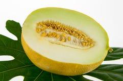 Stycke av melon Royaltyfri Bild