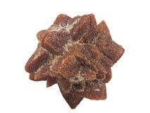 Stycke av sällsynt mineralisk ikaite eller glendonite, från det vita havet, Kola Peninsula, makro som isoleras royaltyfria foton