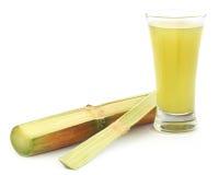 Stycke av sockerrörfruktsaft royaltyfri fotografi