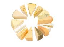 Stycken av de olika typerna av ost fotografering för bildbyråer