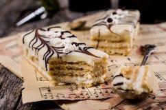 Stycken av den ljusbruna kakan Royaltyfri Fotografi