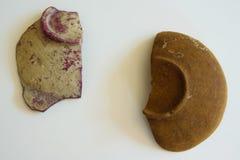 Stycken av forntida keramiska bunkar Arkivfoton