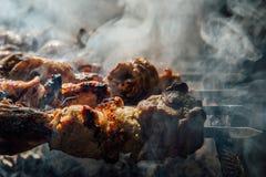 Stycken av kött som strängas på steknålar Royaltyfri Fotografi