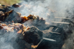 Stycken av kött som strängas på steknålar Arkivbild