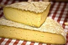 Stycken av ost Arkivfoto