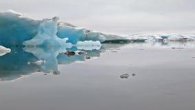 Stycken av is som svävar ner i islagun lager videofilmer