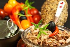 Stycken av tonfisk med grönsaker Preserved krossade tonfisk Grönsaker och fisk Sund mat för barn fotografering för bildbyråer