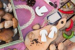 Stycken av vita champinjoner, peppar och kryddor Arkivbilder