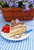 Stycket av kakan med kräm- och chokladtoppning Arkivfoton