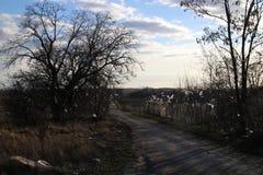 Stycket av plast- på träd och staketet nära rackar ner på förrådsplatsen, Stupava Royaltyfri Fotografi