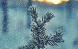Styczeń 33c krajobrazu Rosji zima ural temperatury fotografia royalty free