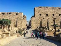 Styczeń 2019, Luxor, Egipt Ludzie iść Karnax świątynia w Luxor Aleja sfinksy obraz stock