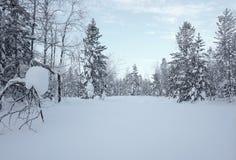 Styczeń 33c krajobrazu Rosji zima ural temperatury Obraz Stock