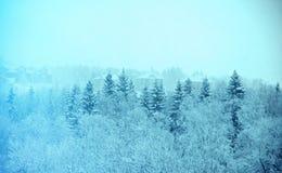 Styczeń 33c krajobrazu Rosji zima ural temperatury snowfall Obraz Stock