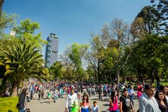 Styczeń 22, 2017 Ludzie chodzi w Chapultepec parku, Meksyk Obraz Stock