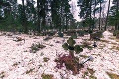 Styczeń 22, 2017: Panorama Skogskyrkogarden cmentarz w Stoc Zdjęcie Stock