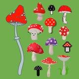 Styl amanita rozrasta się niebezpiecznego ustalonego wektorowego jadowitego sezonu toksyczną grzybową karmową ilustrację Fotografia Royalty Free
