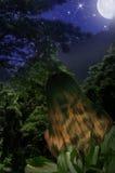 styl dżungli Zdjęcie Stock