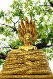 A style of Buddha with a naga over His head Royalty Free Stock Images