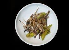 Style coréen de nourriture, vue supérieure d'émoi d'anchois frite avec le poivron vert, arrosé images libres de droits