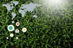 Style créatif fait de fleurs et feuilles avec des notes se trouvant à plat photos libres de droits