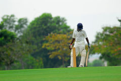Style of a cricket batsman stock image