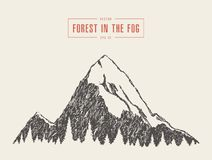 Style de forêt de pin de crête de montagne de vecteur dessiné Photos stock