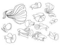 Style de griffonnage, poisson de combat siamois Photographie stock