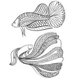 Style de griffonnage, poisson de combat siamois Photos libres de droits