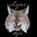 Style de Lynx Image libre de droits