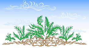 Style Fern Frame. The average frame made vectors, on a white background stock illustration