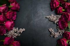 Style gothique de fond foncé de roses rouges de Bourgogne Photo libre de droits