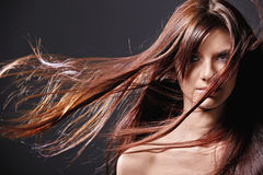 Style hair Royalty Free Stock Images