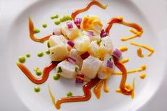 Style moderne de gastronomie de recette de Ceviche photos libres de droits