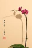 Style Orchidée-chinois de peinture Images libres de droits