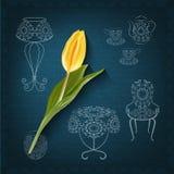 Style ornemental de dessin de main de meubles et une tulipe Photographie stock