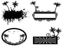 Cadre de palmier Photographie stock libre de droits