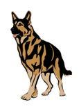 Style réaliste de Dog Flat de berger allemand Photographie stock libre de droits