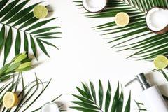 Free Styled Beauty Frame, Web Banner. Skin Cream, Soap Bottle, Coconut, Lemons And Lime Fruit On Lush Palm Leaves. White Stock Photography - 140973482