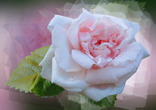 Styled rose. Unreal fantasy - pink rose on filtered background Royalty Free Stock Photos