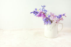 Styled stock floral image Royalty Free Stock Photos