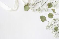 Styled stock photo. Feminine wedding desktop mockup with baby`s breath Gypsophila flowers, dry green eucalyptus leaves. Satin ribbon and white background stock photography