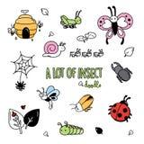 Styles de dessin de main des insectes mignons Images stock