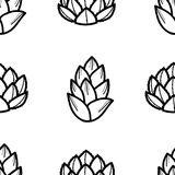 2 styles of succulent in black outline on white background.. 2 styles of succulent in black outline on white background. Hand drawn style. Seamless pattern Stock Photos